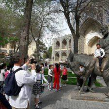 Bukhara-lyabihouse